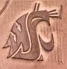 washngton state cougars