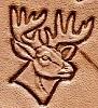 #53 –  Buck