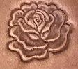 #74 – Rose