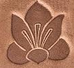 #75 – Saffron Flower
