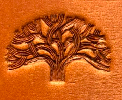 #79 –Tree