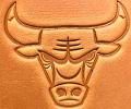 #87H- Chicago Bulls